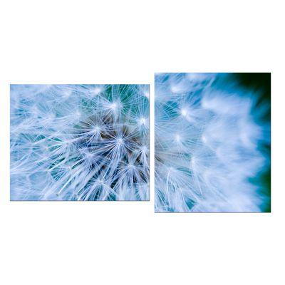 Leinwandbild - Pusteblume 110x60 cm 2 teilig – Bild 2