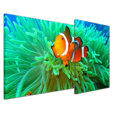 Leinwandbild - Clownfisch 110x60 cm 2 teilig – Bild 1