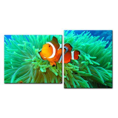 Leinwandbild - Clownfisch 110x60 cm 2 teilig – Bild 2