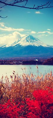 Türtapete selbstklebend Fuji im Herbst Vintage 90 x 200 cm  Berg Japan China Asien Vulkan Natur Landschaft Wasser – Bild 1