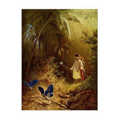 Carl Spitzweg - Der Schmetterlingsfänger – Bild 7