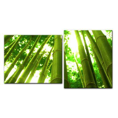 SALE Leinwandbild - Bambuswald in Thailand - 110x60 cm 2tlg – Bild 1