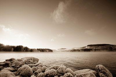 Fototapete - Eine Winterlandschaft bei einem norwegischem Fjord – Bild 4