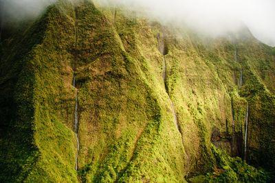 Fototapete Kauai Mt. Waialeale Wasserfälle im Regen, Hawaii  – Bild 2