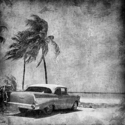 Fototapete Caribbean Resort II  – Bild 6