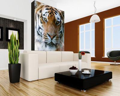 Fototapete Tigergesicht  – Bild 1