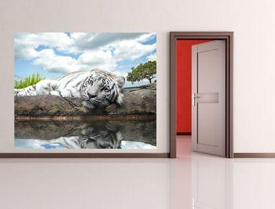 Fototapete White Tiger  – Bild 1