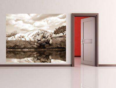 Fototapete White Tiger  – Bild 3
