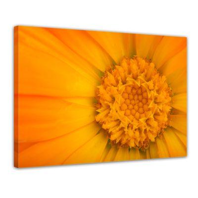 Leinwandbild - Gelbe Blume – Bild 1