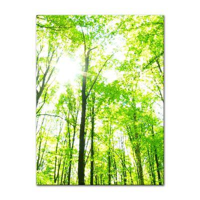 Leinwandbild - Grüner Wald – Bild 3