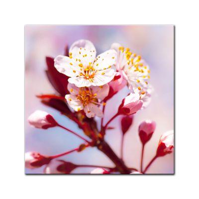 Leinwandbild - Apfelblüten – Bild 2