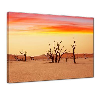 Leinwandbild - Dead Valley - Namibia – Bild 1