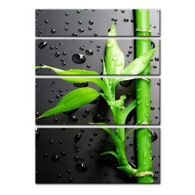 Leinwandbild - Frischer Bambus II – Bild 9