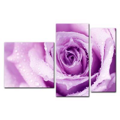 Leinwandbild - Lila Rose mit Tropfen II – Bild 8