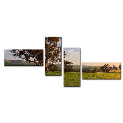 Leinwandbild - Clare Field - Australien – Bild 12