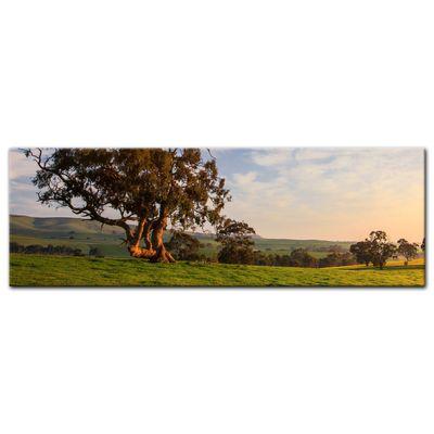 Leinwandbild - Clare Field - Australien – Bild 3