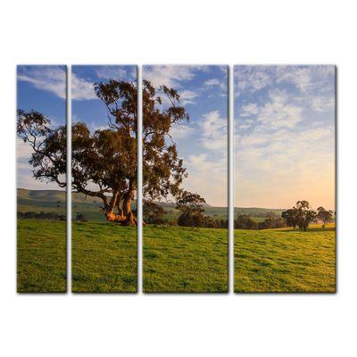 Leinwandbild - Clare Field - Australien – Bild 8