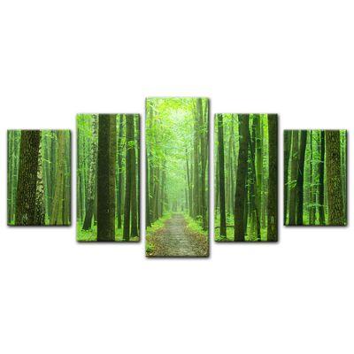 Leinwandbild - Waldweg – Bild 10