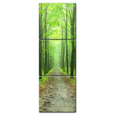 Leinwandbild - Waldweg – Bild 5