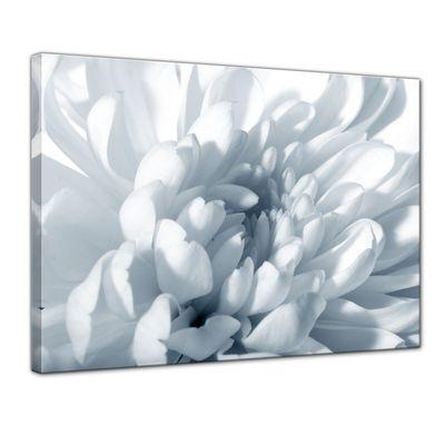 Leinwandbild - Weisse Chrysanteme – Bild 1