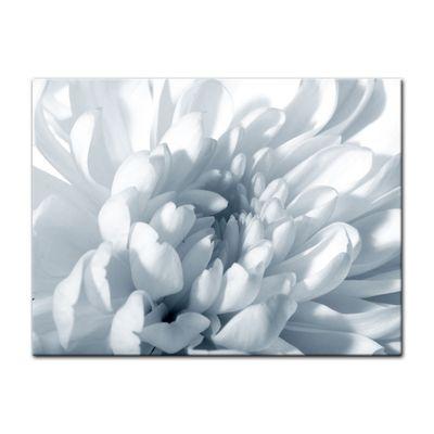 Leinwandbild - Weisse Chrysanteme – Bild 10
