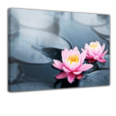Leinwandbild - Lotusblüte