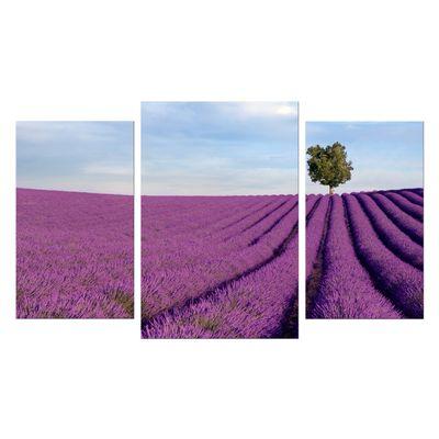 Leinwandbild - Lavendelfeld in der Provence - Frankreich II – Bild 7