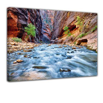 Leinwandbild - Blick auf den Virgin River im Zion National Park - Utah USA – Bild 1