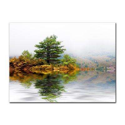 Leinwandbild - Pinienbaum – Bild 2