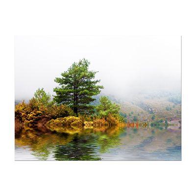 Leinwandbild - Pinienbaum – Bild 3