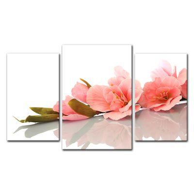 Leinwandbild - Gladiole – Bild 10