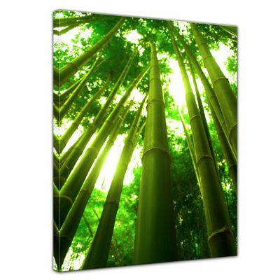 Leinwandbild - Bambus in Thailand  – Bild 1