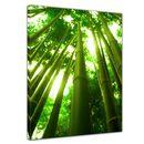 Leinwandbild - Bambus in Thailand