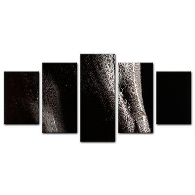 Leinwandbild - Frauenkörper mit Wasserperlen - Erotik – Bild 15