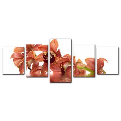 Leinwandbild - Orchidee V – Bild 13