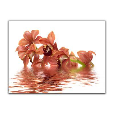 Leinwandbild - Orchidee V – Bild 4