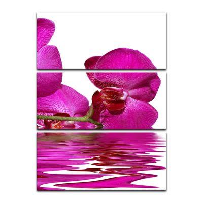 Leinwandbild - Orchidee II – Bild 9