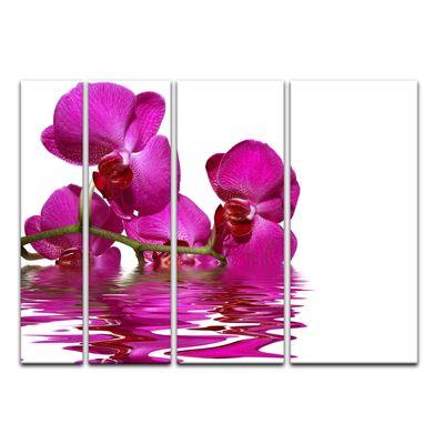 Leinwandbild - Orchidee II – Bild 18