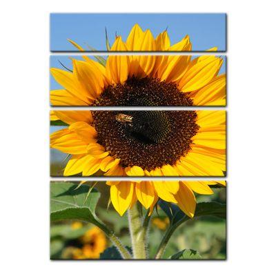 Leinwandbild - Sonnenblume mit Biene – Bild 5