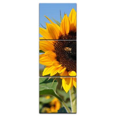 Leinwandbild - Sonnenblume mit Biene – Bild 11