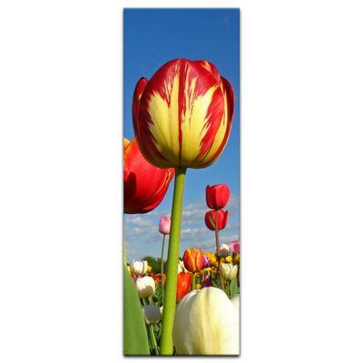 Leinwandbild - Tulpenbeet – Bild 12