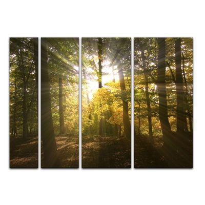 Leinwandbild - Waldlichtung – Bild 10