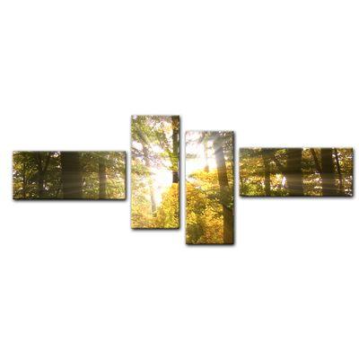 Leinwandbild - Waldlichtung – Bild 15