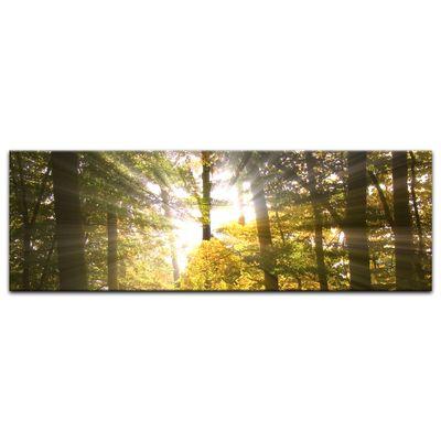 Leinwandbild - Waldlichtung – Bild 6