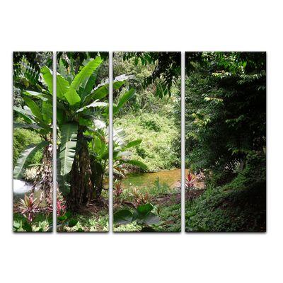 Leinwandbild - Bananenbaum im Dschungel – Bild 13