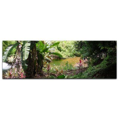 Leinwandbild - Bananenbaum im Dschungel – Bild 7