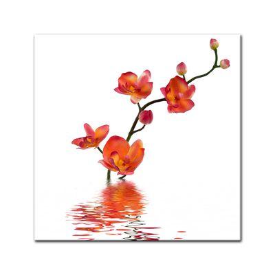 Leinwandbild - Orchidee im Wasser – Bild 2