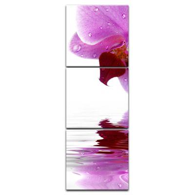 Leinwandbild - Orchideenblüte – Bild 13