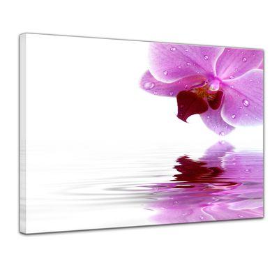Leinwandbild - Orchideenblüte – Bild 1