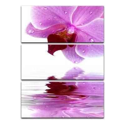Leinwandbild - Orchideenblüte – Bild 10